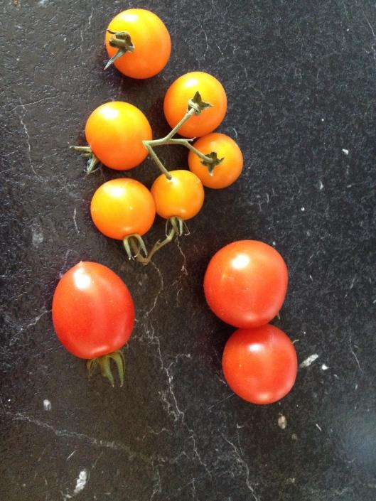 Tomater fra haven og nu er alle tre slags der.