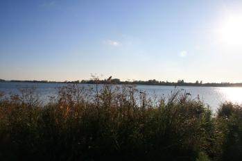 Udsigt over Guldborgsund.