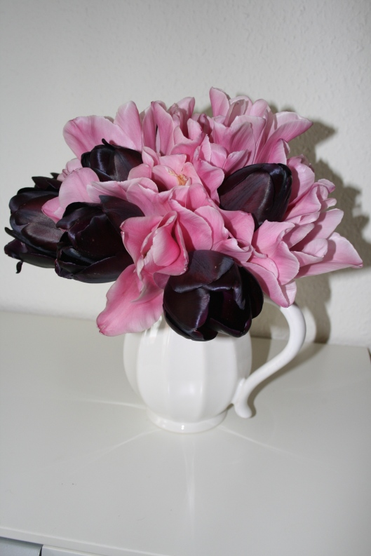 Havens sidste tulipaner....lige ved af smide de kronbladene, sp jeg mente de skulle slutte deres liv i min stue og elsker farve kombinationen.