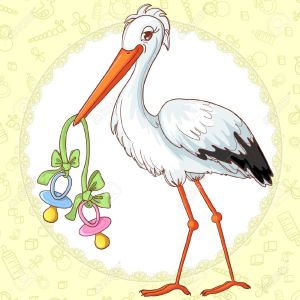19699728-baby-greetings-card-with-stork-and-two-pacifiers-for-twins-stock-vector